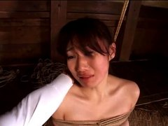 Japanese Spanking Play File No.04